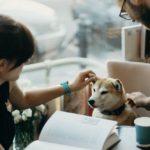 Hunde lernen und lehren uns vieles, was wir ohne Ihnen nie gelernt bzw. gelehrt haetten